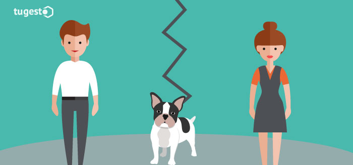 divorcio-custodia-compartida-mascotas