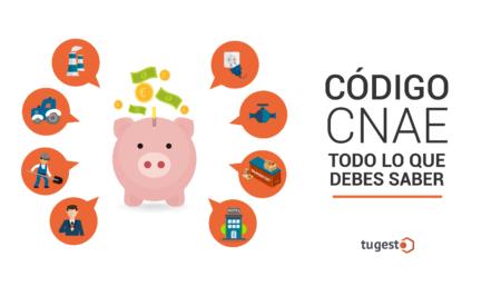 ¿Ejerces una actividad económica y no sabes del todo qué es el código CNAE? Este post te interesa.